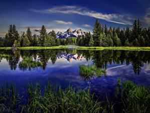 Fotos Gebirge USA Park HDR Beaver Pond, Grand Teton Wyoming Natur