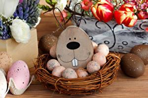 Bilder Feiertage Ostern Tulpen Eier Nest