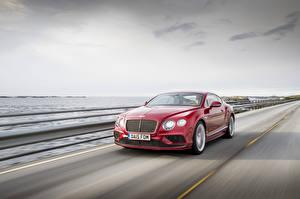 Image Bentley Motion 2015 Continental GT automobile
