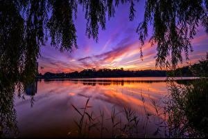 Bilder Sonnenaufgänge und Sonnenuntergänge Flusse Himmel Ast Natur