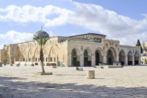 Fotos Israel Tempel Palmengewächse Jerusalem