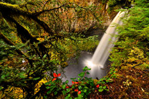 Hintergrundbilder USA Wasserfall Washington Ast Natur