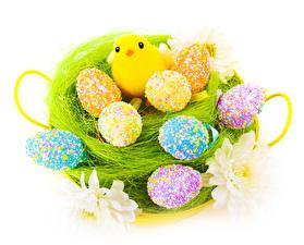 Hintergrundbilder Feiertage Ostern Hühner Eier Nest Design