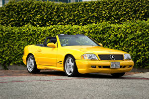Fotos Mercedes-Benz Gelb Cabriolet Metallisch 1998-2001 SL 500 US-spec (R129) Autos