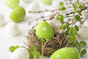 Hintergrundbilder Ostern Ei Nest