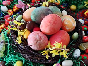 Bilder Feiertage Ostern Süßware Ei Nest