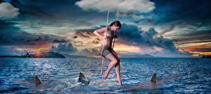 Fonds d'écran Mer Requins Nuage Filles