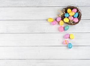 Hintergrundbilder Feiertage Ostern Eier Nest Vorlage Grußkarte