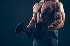 Hintergrundbilder Bodybuilding Mann Hantel Muskeln