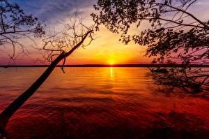 Hintergrundbilder Sonnenaufgänge und Sonnenuntergänge See Ast Natur