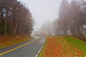 Image Roads Autumn Fog Nature