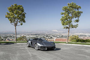 Bilder Graues Cabrio 2015 Rezvani Motors auto