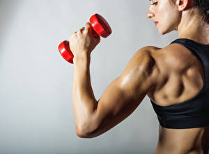 Fotos Fitness Mäuse Hanteln Rücken sportliches Mädchens