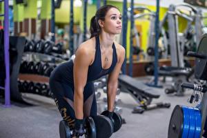 Bilder Fitness Hanteln Turnhalle Trainieren Sport Mädchens