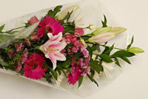 Fotos Blumensträuße Gerbera Chrysanthemen Lilien Weißer hintergrund Blumen