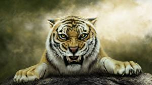 Images Tigers Painting Art Angry Fantasy Animals