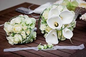 Wallpaper Bouquet Rose Callas White 2 Flowers