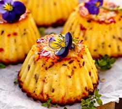 Bilder Backware Ackerveilchen Muffin das Essen