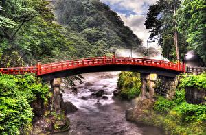 壁纸、、東京都、日本、川、橋、自然
