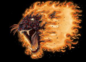 Wallpapers Lion Magical animals Fire Angry Fantasy