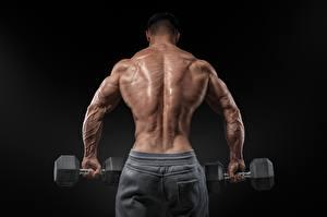 Hintergrundbilder Bodybuilding Mann Rücken Hanteln Schwarzer Hintergrund Muskeln Sport