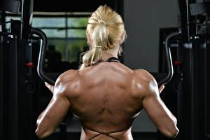 Fonds d'écran Bodybuilding Dos sportives Filles