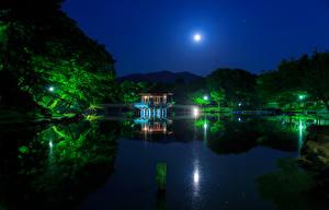 Wallpaper Japan Parks Pond Pagodas Trees Night time Moon Ukimido Nature