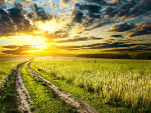 Hintergrundbilder Landschaftsfotografie Sonnenaufgänge und Sonnenuntergänge Acker Himmel Straße Ähre Wolke Natur