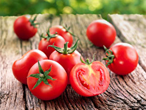 Bilder Tomaten Großansicht das Essen
