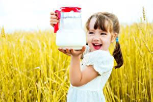 Bilder Felder Milch Kleine Mädchen Ähre Kanne Lächeln Kinder
