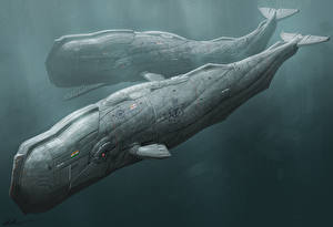 Photo Underwater world Technics Fantasy Two Fantasy