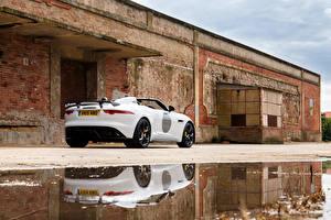 Hintergrundbilder Jaguar Weiß Hinten Pfütze 2014 F-Type Project 7 UK-spec Autos
