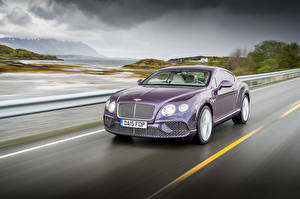 Images Bentley Moving 2015 Continental GT automobile