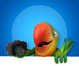Fonds d'écran Oiseau Perroquet Appareil photographique Bec 3D Graphiques Animaux