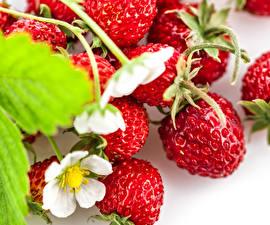 Hintergrundbilder Beere Großansicht Hügel-Erdbeere Ast