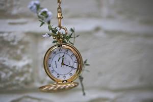 Hintergrundbilder Uhr Taschenuhr