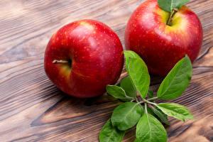 Hintergrundbilder Äpfel Rot Zwei Ast Blattwerk Lebensmittel