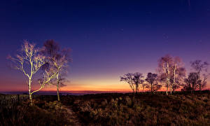 Hintergrundbilder Himmel Stern Vereinigtes Königreich Bäume Peak District