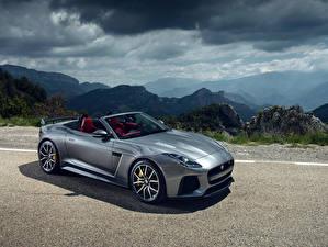 Bilder Jaguar Graues Cabriolet 2016 F-Type SVR Convertible Worldwide automobil