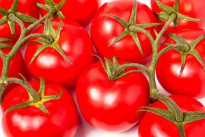 Hintergrundbilder Tomate Großansicht das Essen