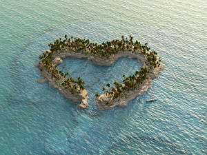 Photo USA Island Sea Palm trees Heart 3D_Graphics