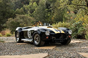 Picture Ford Black 1965 Shelby Cobra 427 automobile