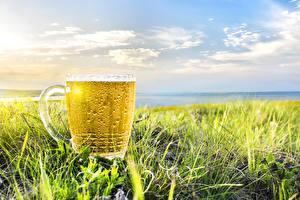 Bilder Bier Acker Himmel Becher Ähre Lebensmittel Natur
