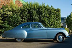 Bilder Bentley Antik Hellblau Seitlich 1953-55 R-Type Continental Sports Saloon AT Autos