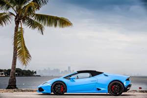 Hintergrundbilder Lamborghini Hellblau Seitlich Metallisch Palmen