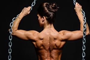 Fonds d'écran Bodybuilding Dos Chaîne Muscle jeunes femmes