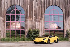 Fotos Lamborghini Gelb