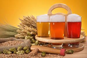 Hintergrundbilder Getränke Bier Weizen Trinkglas Drei 3 Ähre Lebensmittel