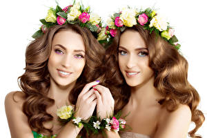 Photo Roses Brown haired Two Hair Glance White background Girls