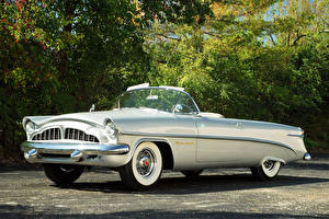 Wallpapers Vintage Silver color Convertible 1954 Packard Panther Daytona Concept Car Cars